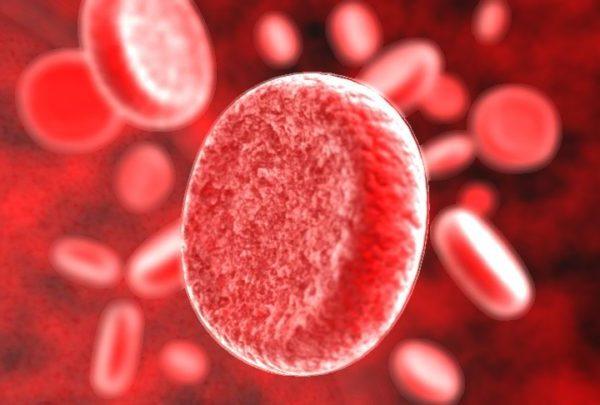как очистить кровь от паразитов