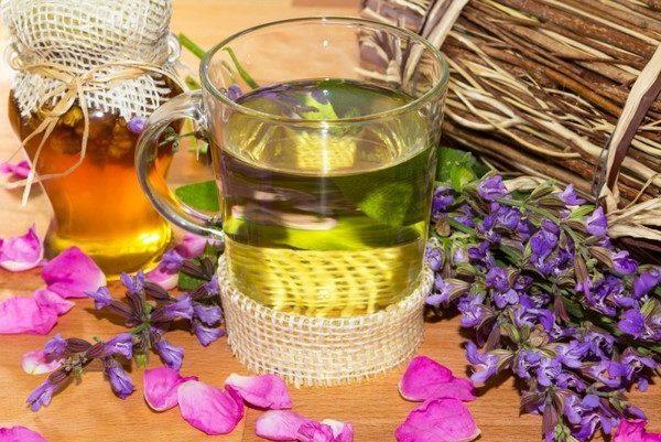 Стакан травяного чая