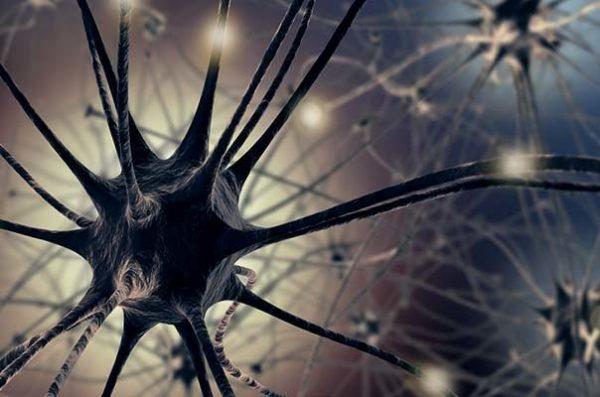 Блокировка нервных импульсов