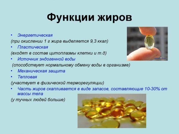 Какова роль жиров в организме
